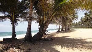 Playa La Boca Near Cabrera at La Entrada