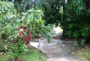 This is the little river that you have to cross in order to get to our house. Two day prior it was DRY!