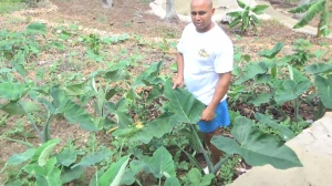 Jose's Sustainable Living In Cabrera Dominican Republic