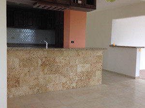 Kitchen Bar - Coral Face With Granite Counters
