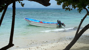 Typical Bacardi Island Scene