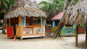 Bacardi Island Tropical Huts