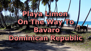 Latest New Highway And Playa Limon