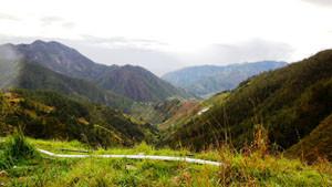 Road To Constanza
