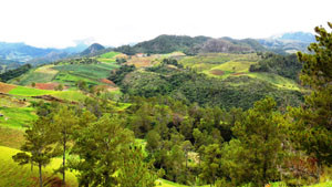 Valley views from the road to Constanza