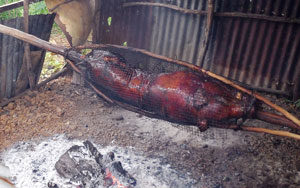 Roast Pig Cooking - Ready To Be Served With Fresh Organic Vegetables And Tropical Fruits