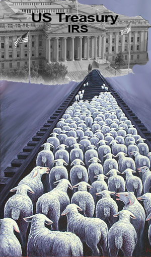 sheep to slaughter irs