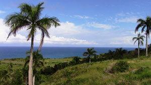 Cabrera Ocean View Property